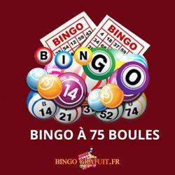 bingo 75 boules gratuit